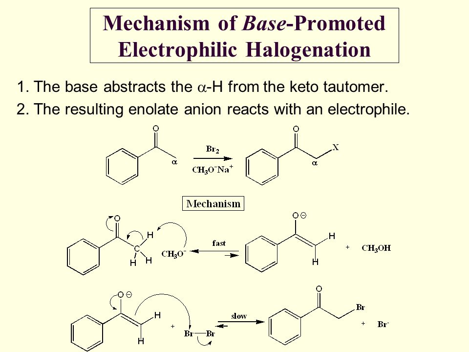 Mechanism of Base-Promoted Electrophilic Halogenation