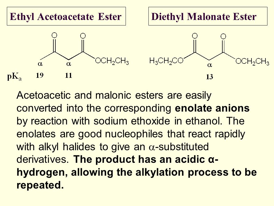 Ethyl Acetoacetate Ester
