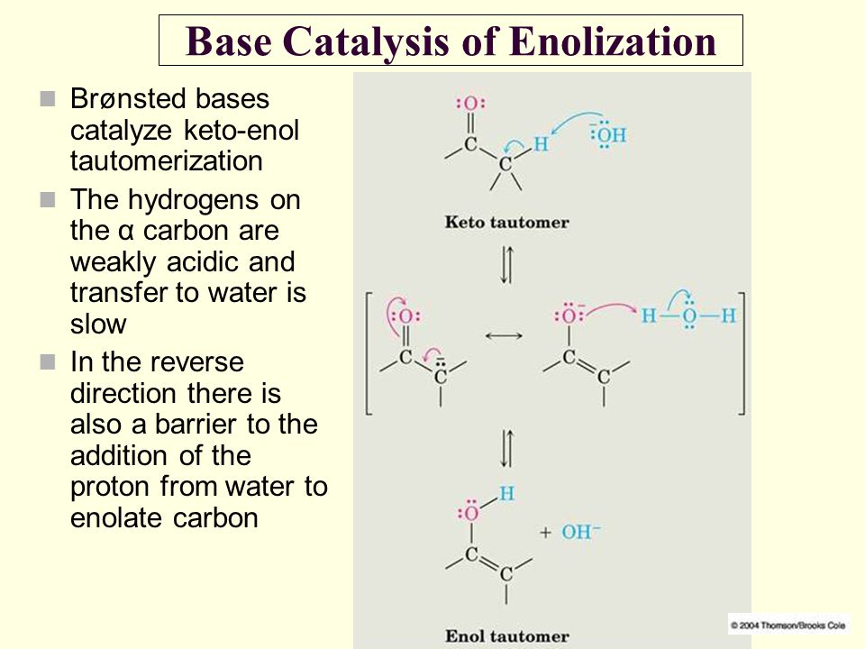 Base Catalysis of Enolization