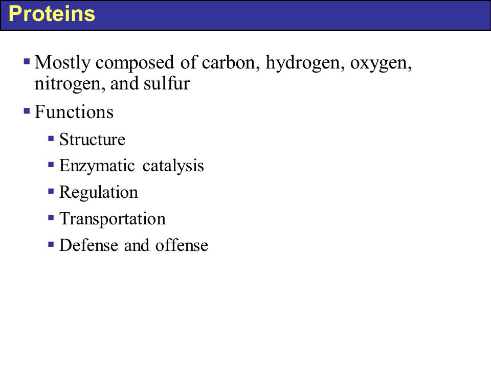 Proteins Mostly composed of carbon, hydrogen, oxygen, nitrogen, and sulfur. Functions. Structure.