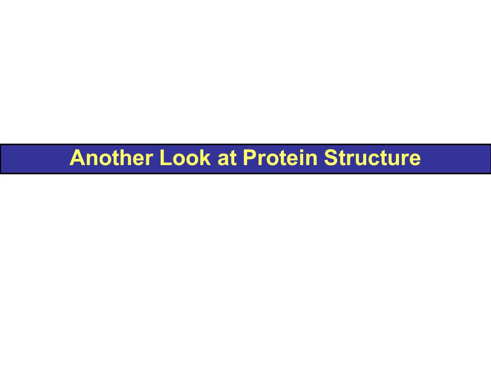 Another Look at Protein Structure