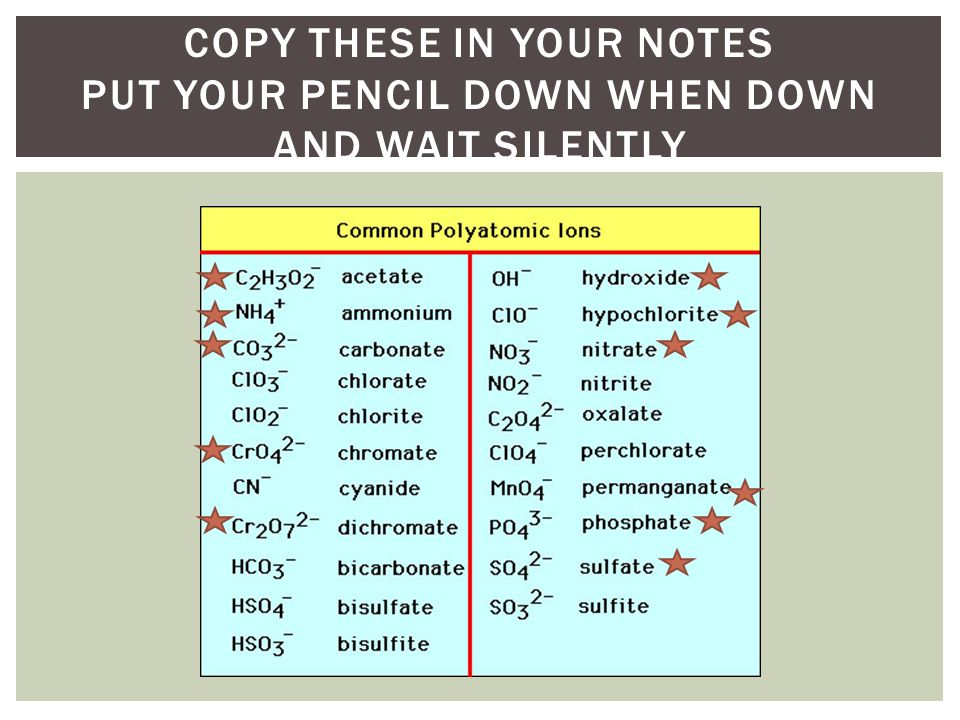 Copy these in your notes Put your pencil down when down and wait silently