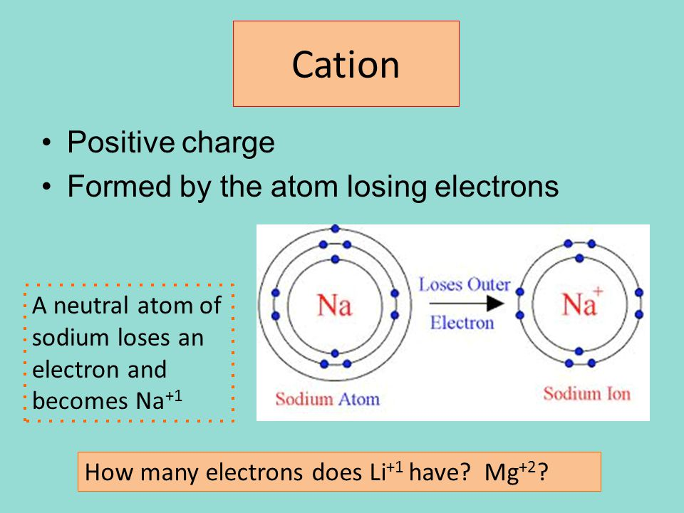 Cation Positive charge Formed by the atom losing electrons