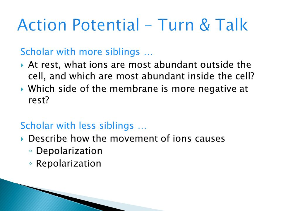 Action Potential – Turn & Talk