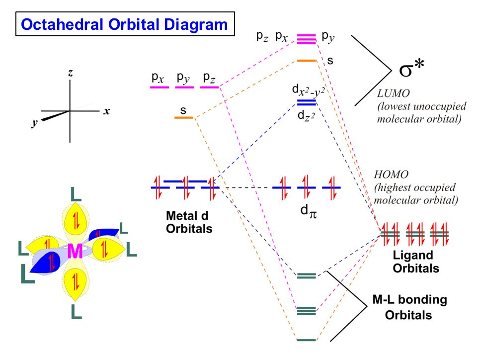 Octahedral Orbital Diagram