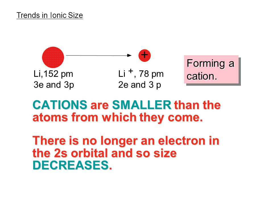 CATIONS are SMALLER than the atoms from which they come.