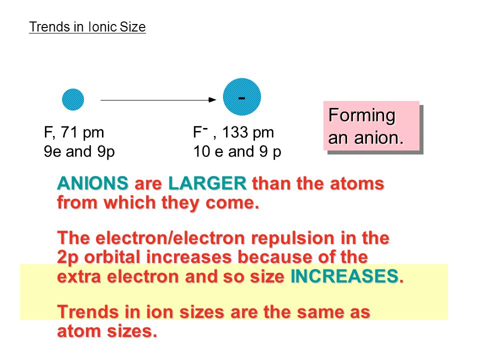 ANIONS are LARGER than the atoms from which they come.