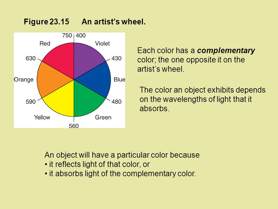 Figure 23.15 An artist's wheel. Each color has a complementary color; the one opposite it on the artist's wheel.
