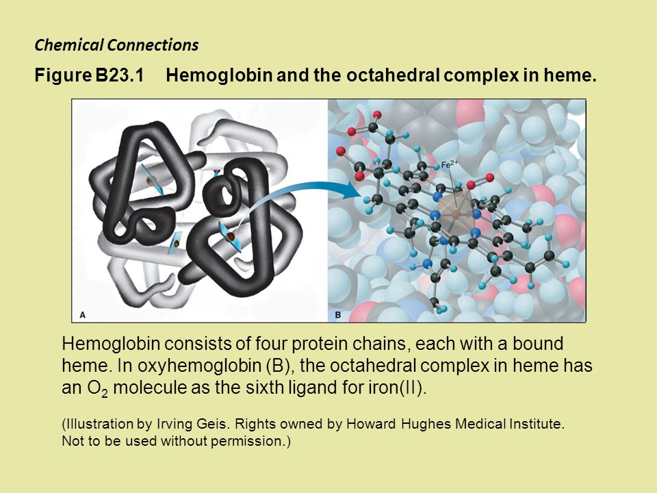 Hemoglobin and the octahedral complex in heme.