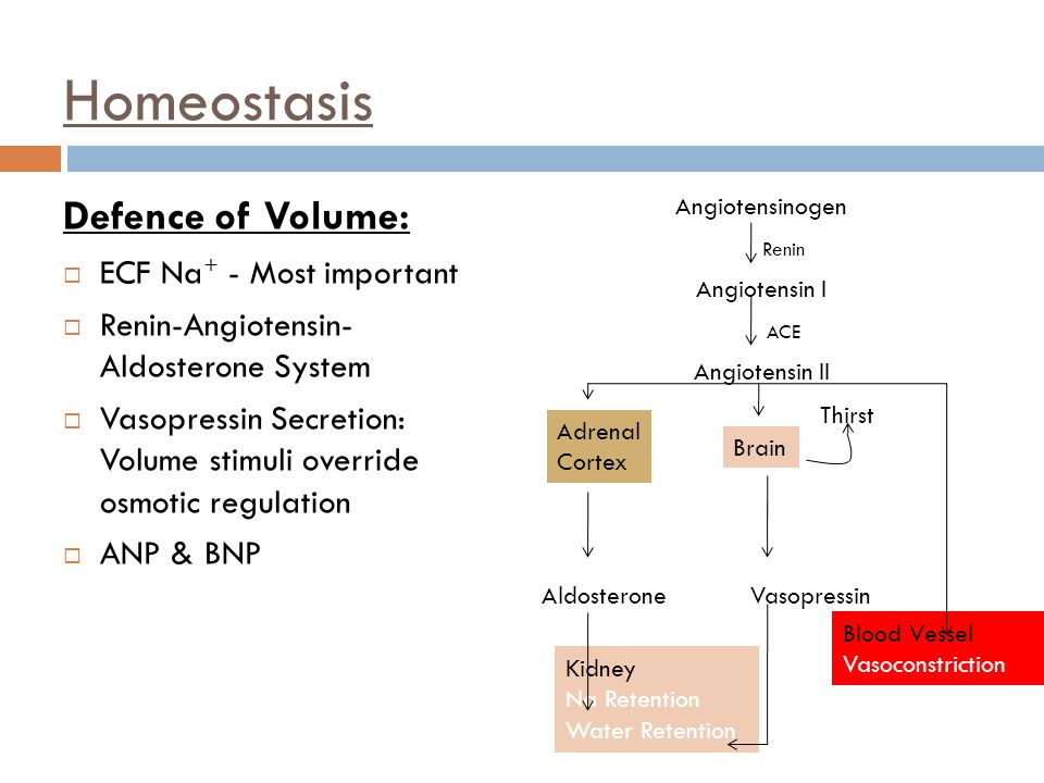 Homeostasis Defence of Volume: ECF Na+ - Most important