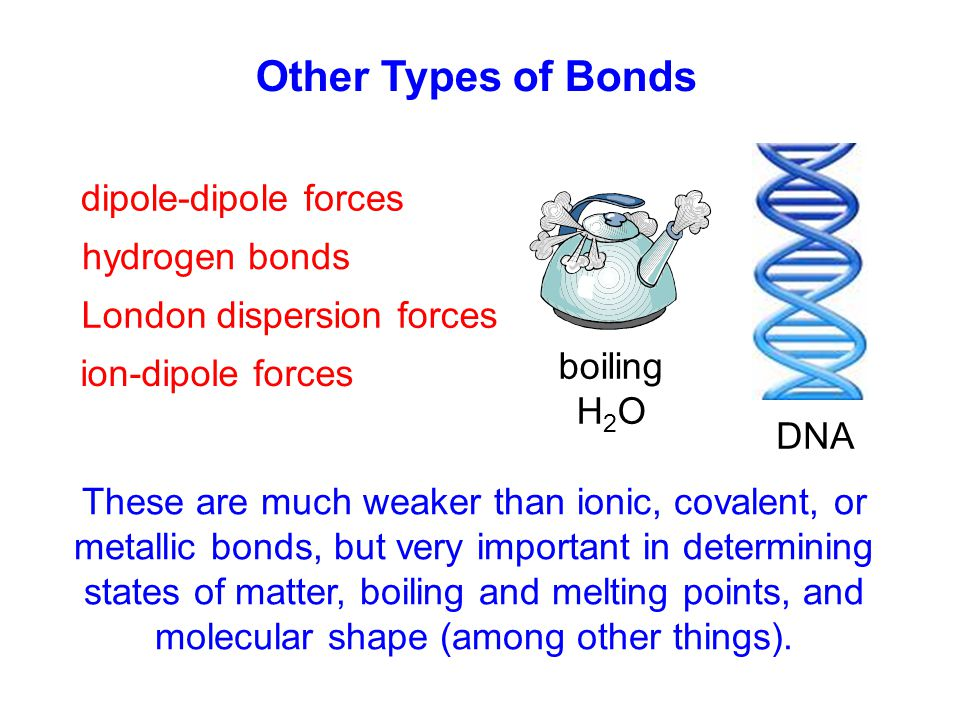 Other Types of Bonds dipole-dipole forces hydrogen bonds