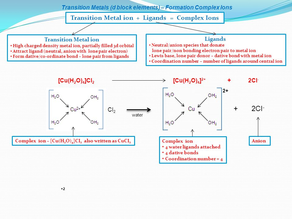 Transition Metal ion + Ligands = Complex Ions