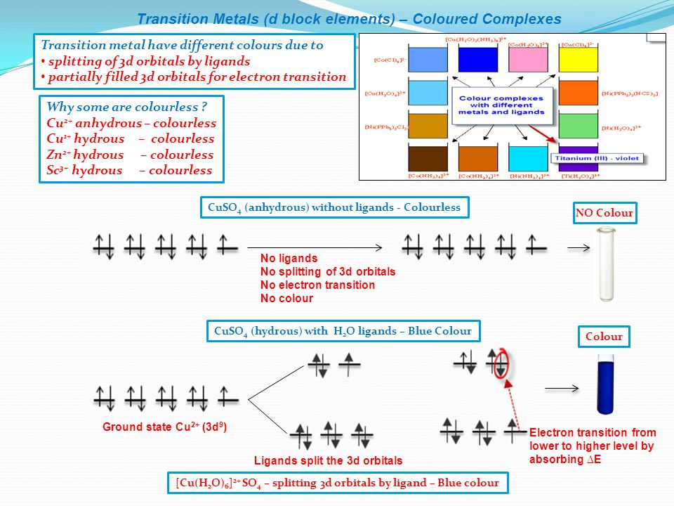 Transition Metals (d block elements) – Coloured Complexes