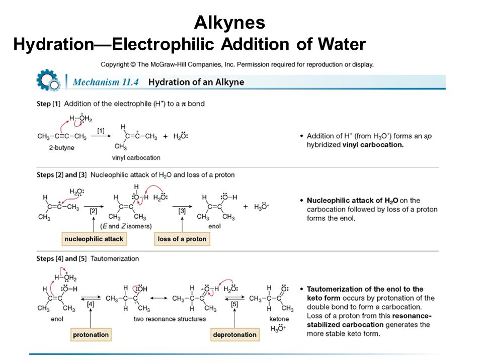 Alkynes Hydration—Electrophilic Addition of Water
