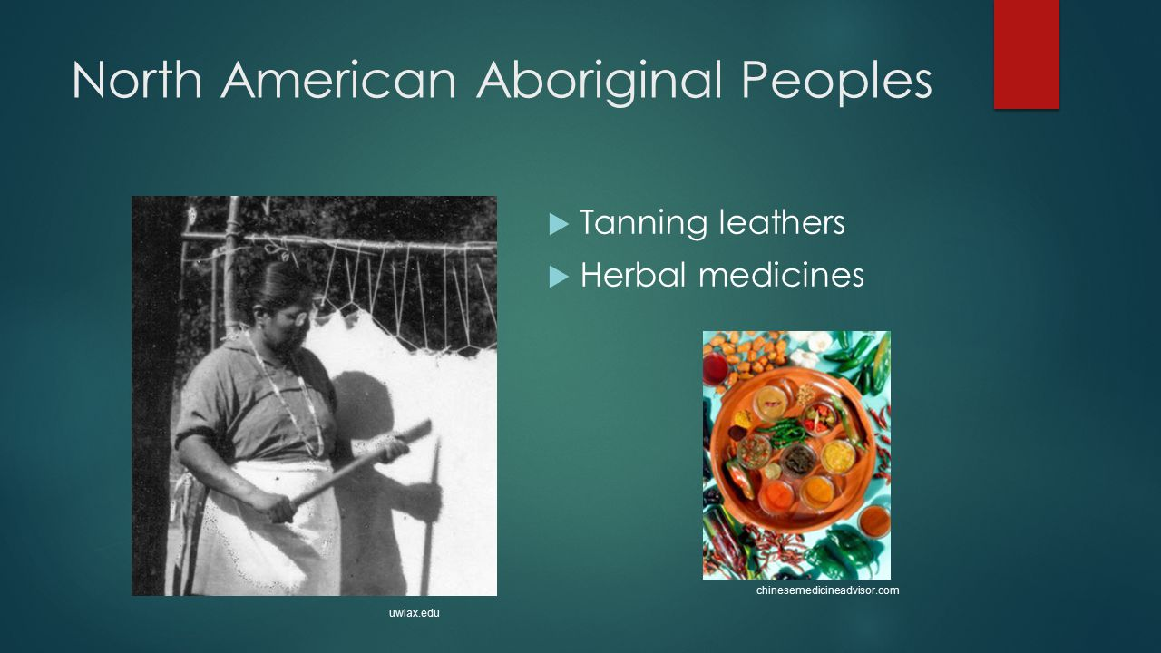 North American Aboriginal Peoples