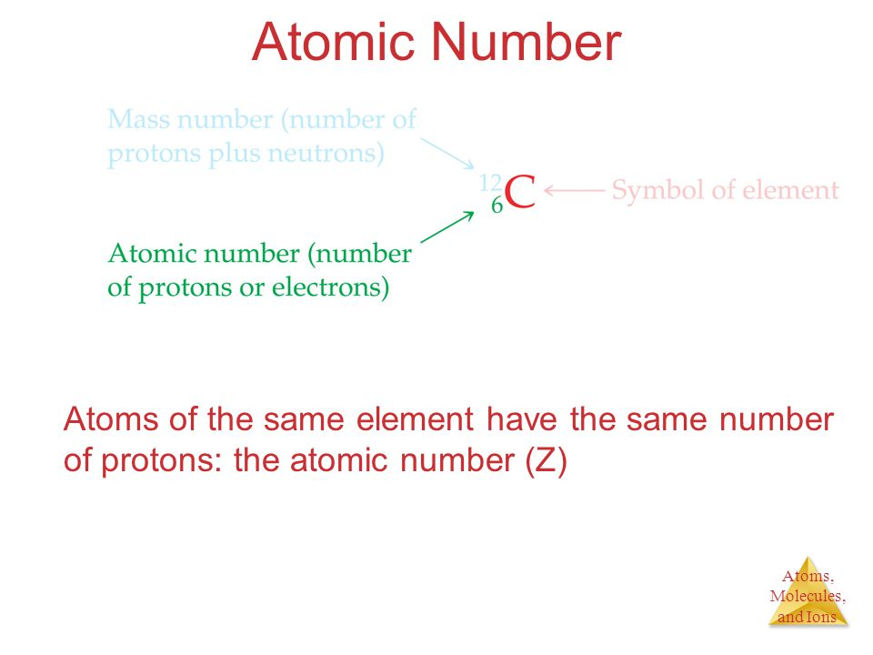 Atomic Number Atoms of the same element have the same number of protons: the atomic number (Z)