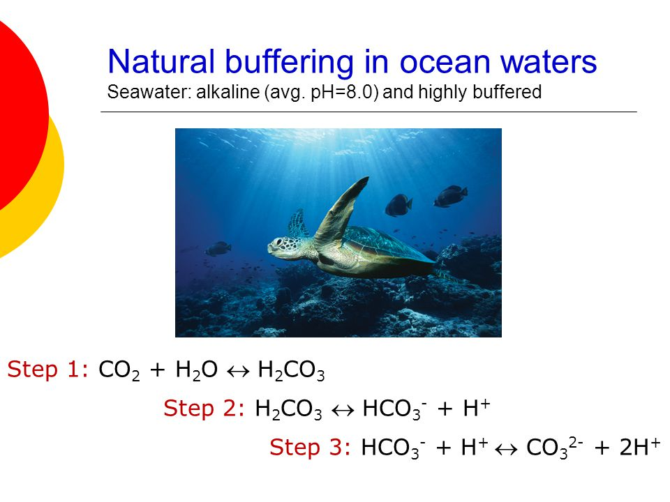 Natural buffering in ocean waters Seawater: alkaline (avg. pH=8