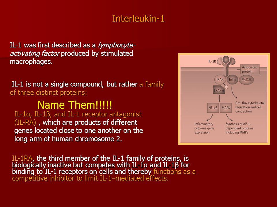 Name Them!!!!! Interleukin-1