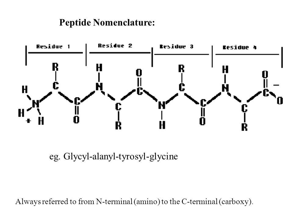 Peptide Nomenclature: