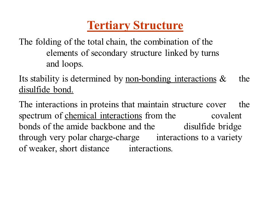 Tertiary Structure The folding of the total chain, the combination of the elements of secondary structure linked by turns and loops.