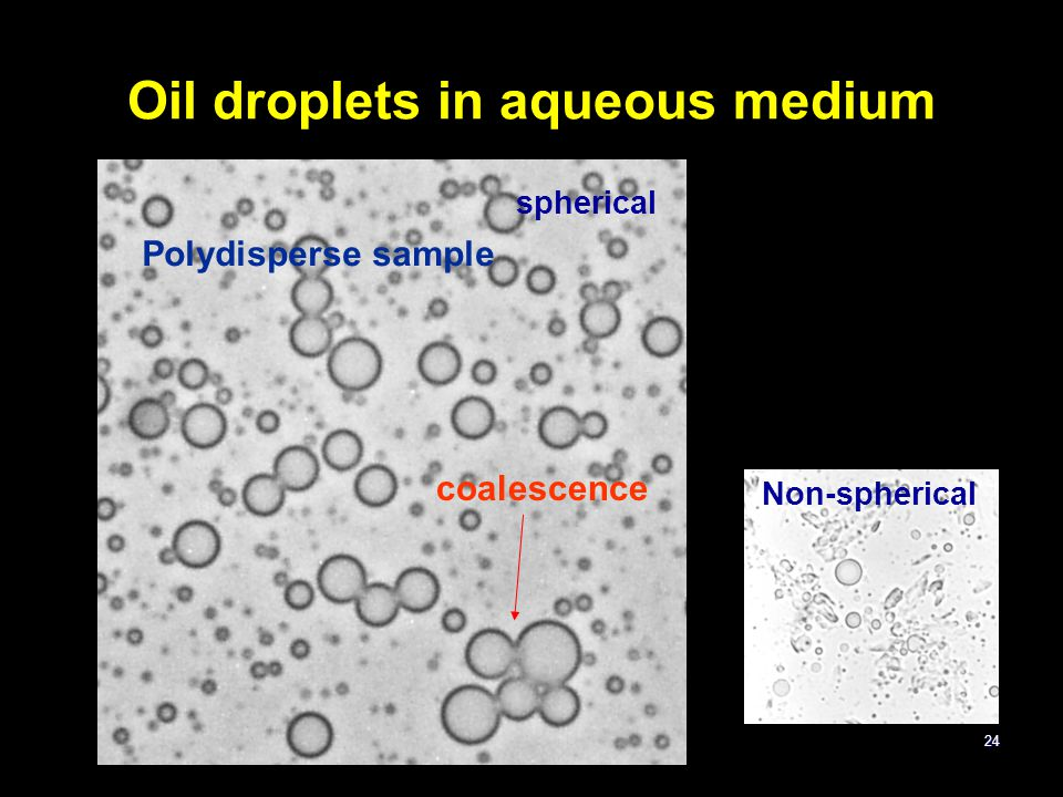 Oil droplets in aqueous medium
