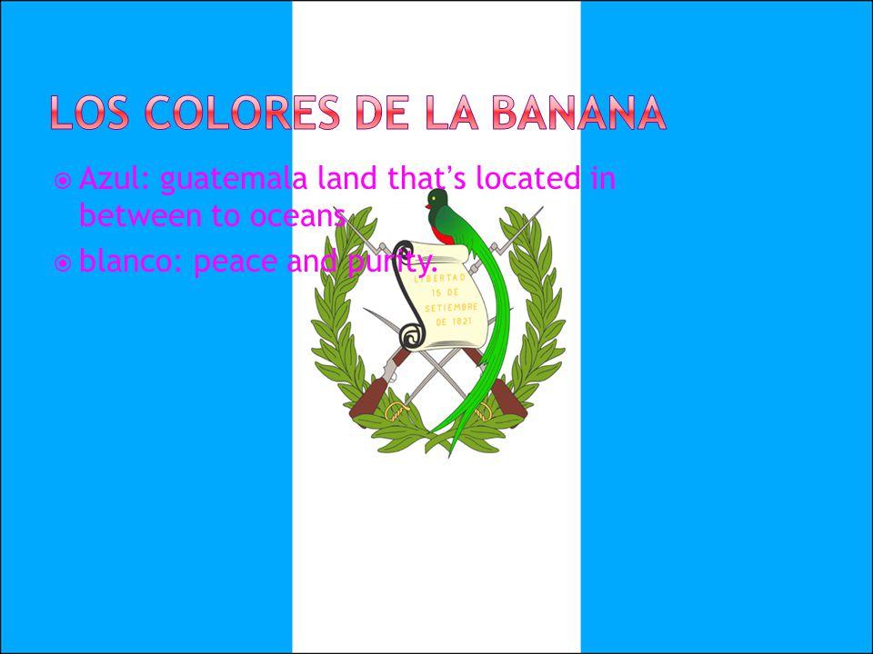 Los colores de la banana