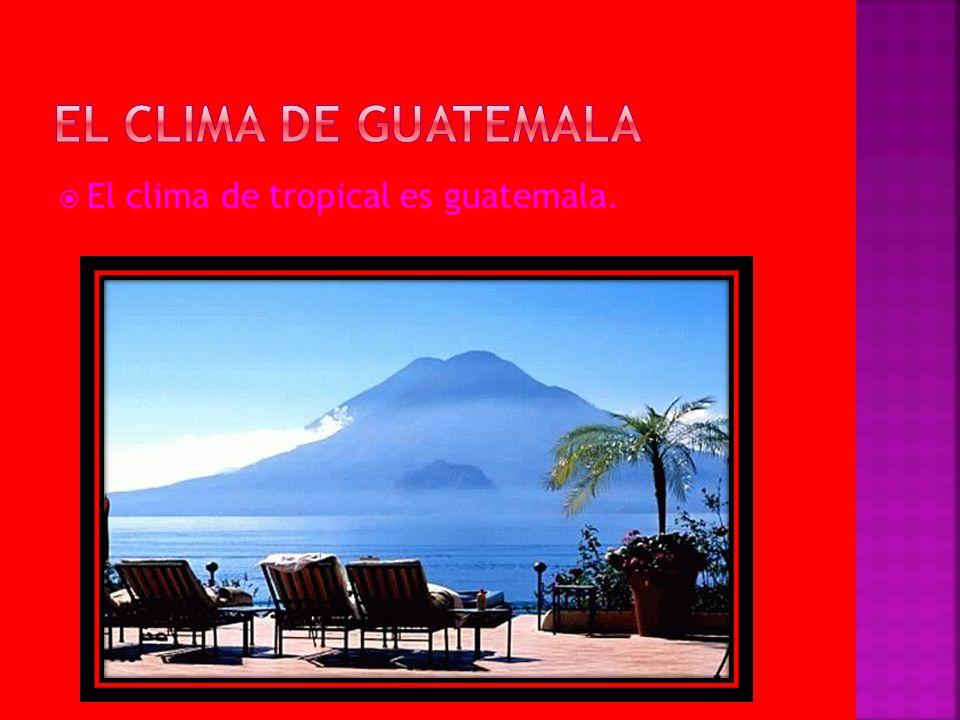 El clima de guatemala El clima de tropical es guatemala.