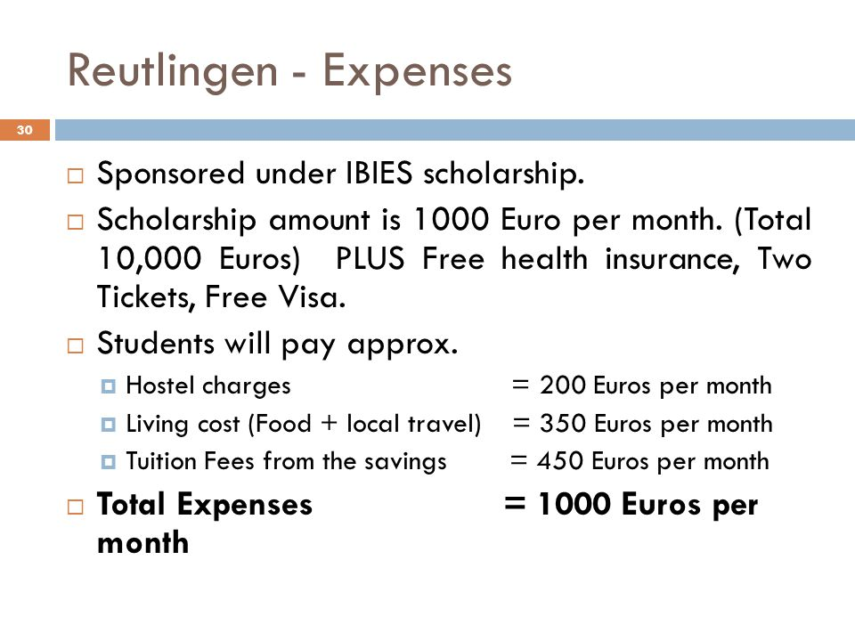 Reutlingen - Expenses Sponsored under IBIES scholarship.