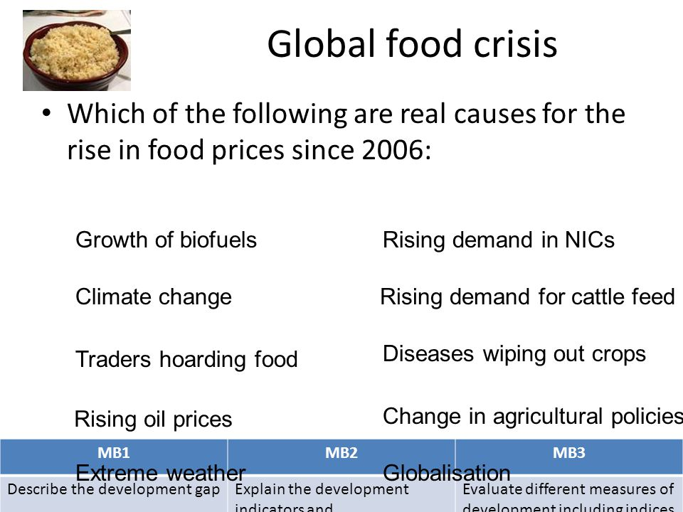 Global food crisis Which of the following are real causes for the rise in food prices since 2006: Growth of biofuels.