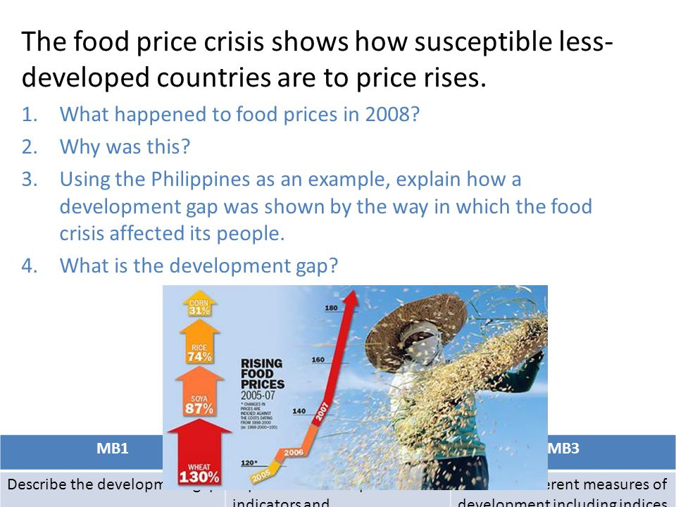The food price crisis shows how susceptible less-developed countries are to price rises.