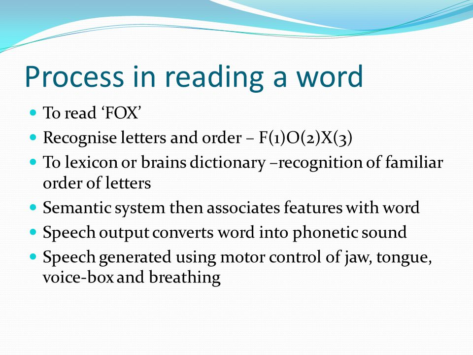 Process in reading a word
