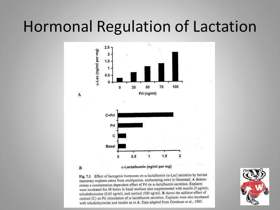 Hormonal Regulation of Lactation