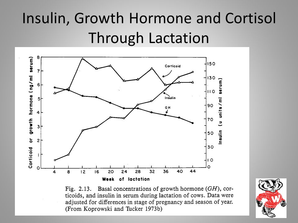 Insulin, Growth Hormone and Cortisol Through Lactation