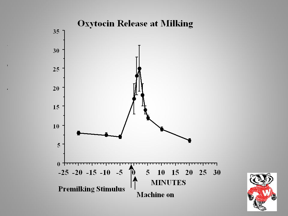 Note that oxytocin is release rapidly, and has a very short lifespan in blood. Its half-life is about 1 minute.