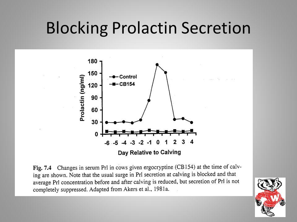 Blocking Prolactin Secretion