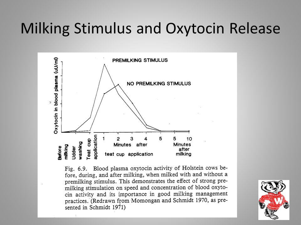 Milking Stimulus and Oxytocin Release