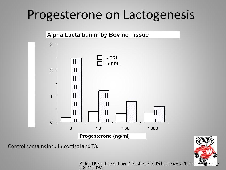 Progesterone on Lactogenesis