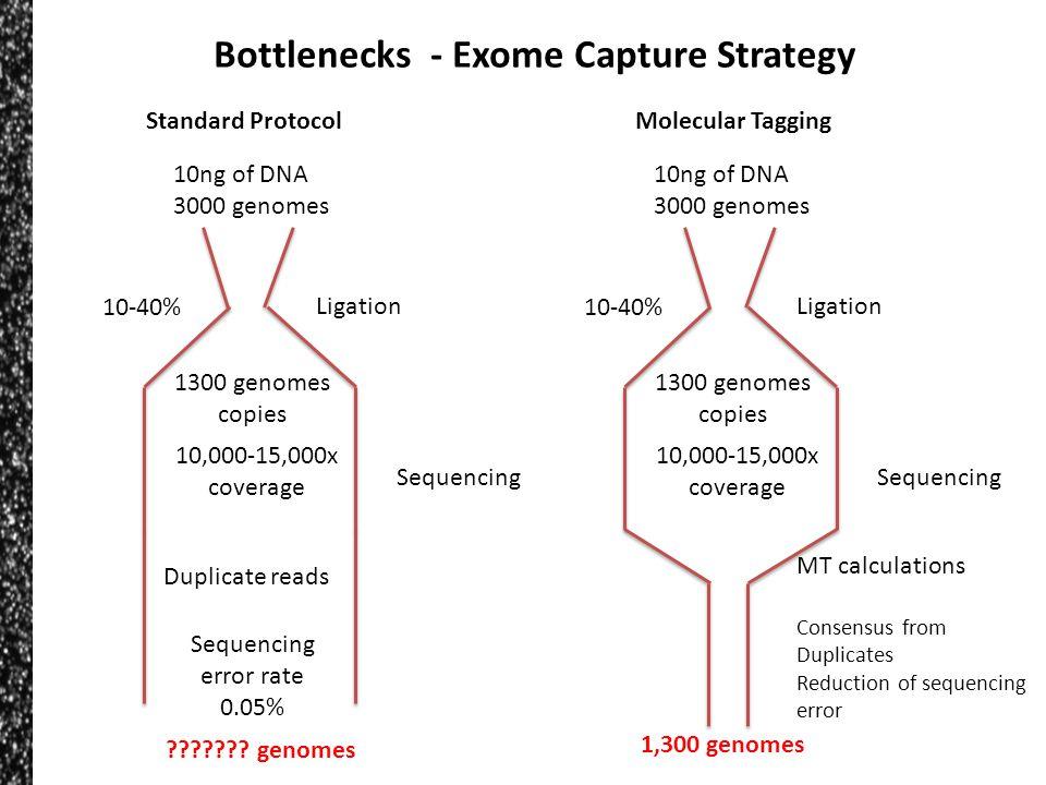 Bottlenecks - Exome Capture Strategy