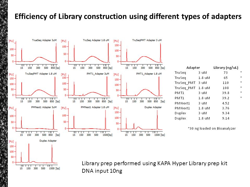 Efficiency of Library construction using different types of adapters