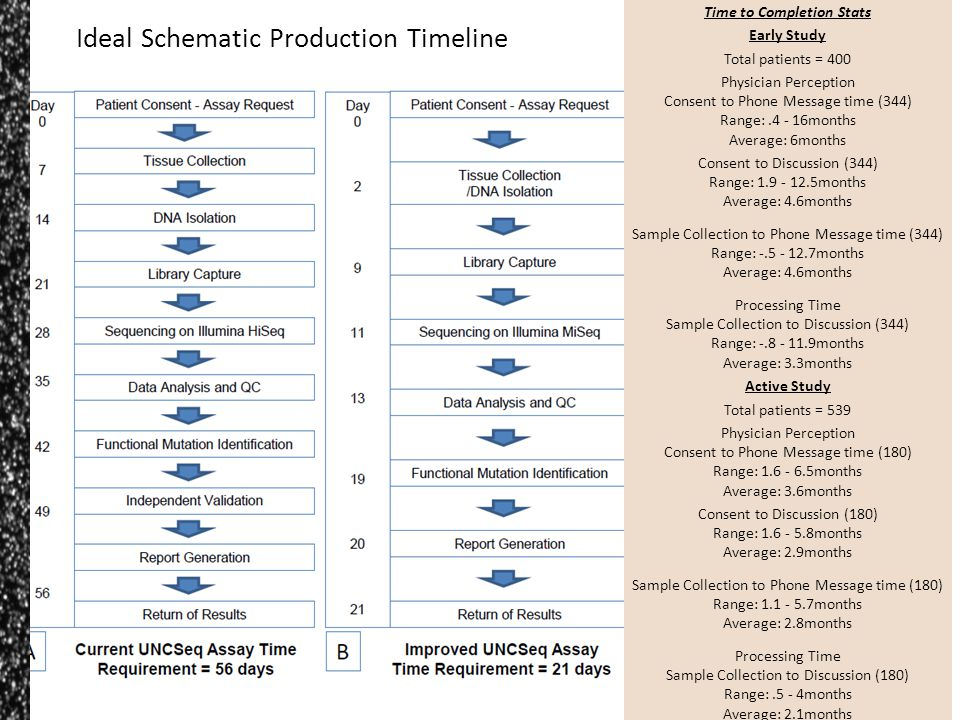 Ideal Schematic Production Timeline