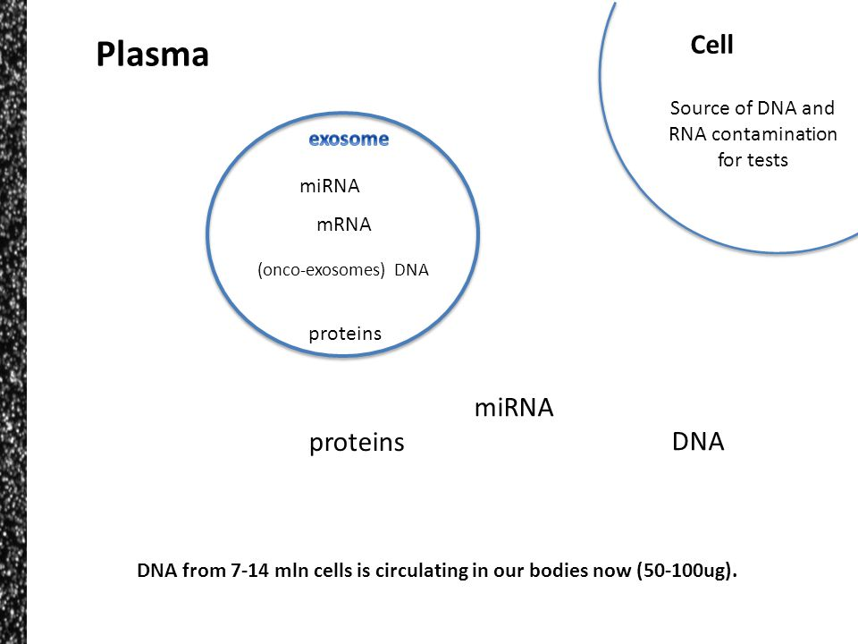 Source of DNA and RNA contamination for tests