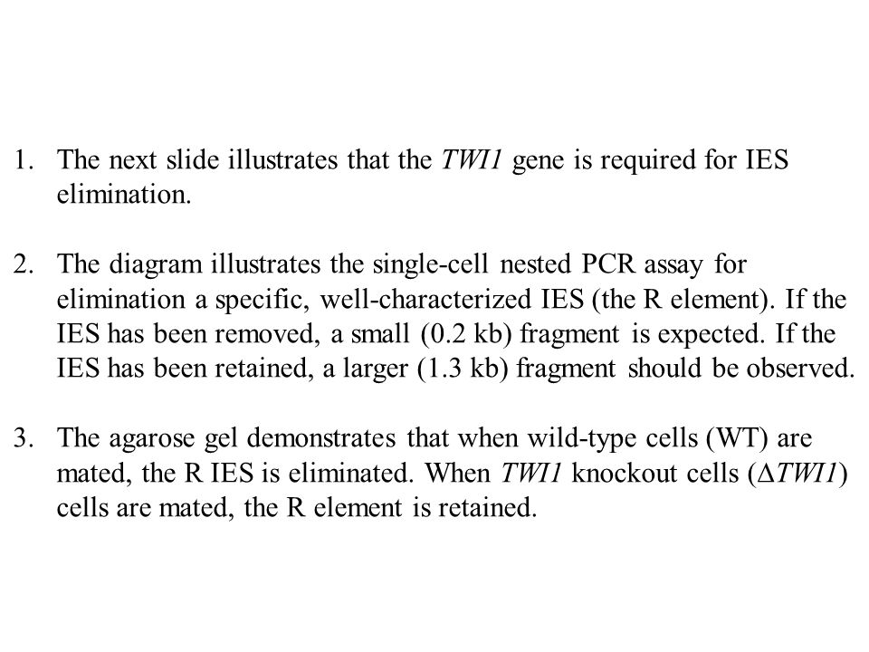 The next slide illustrates that the TWI1 gene is required for IES elimination.
