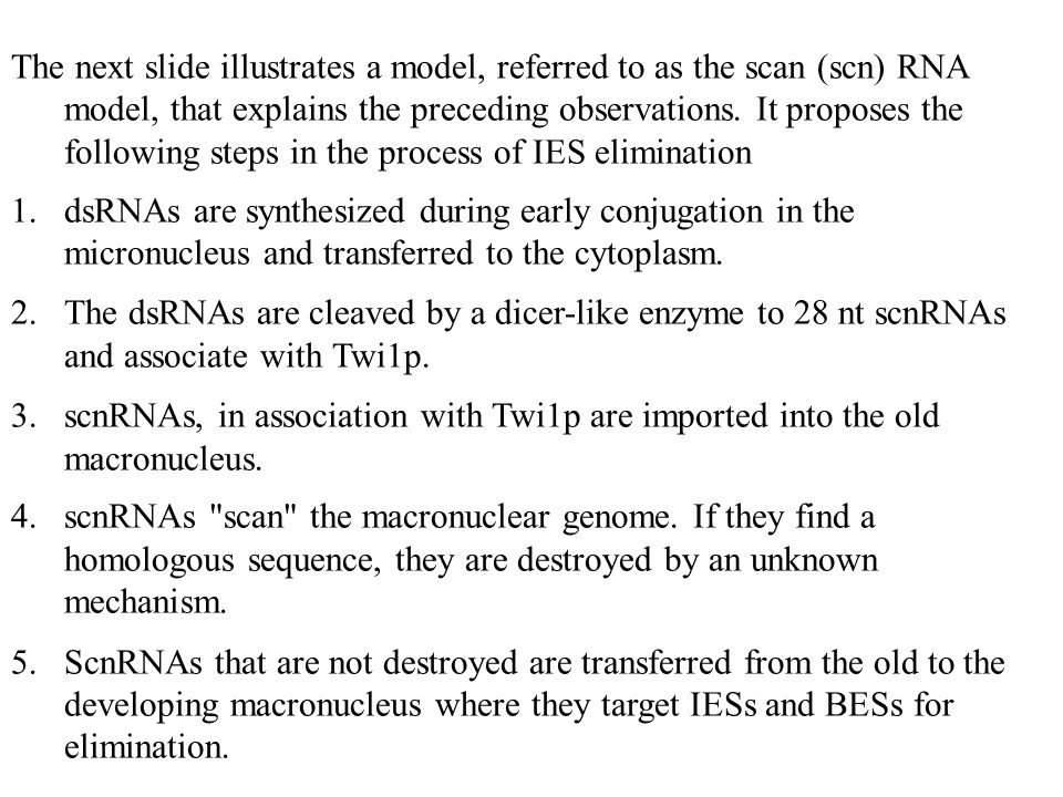The next slide illustrates a model, referred to as the scan (scn) RNA model, that explains the preceding observations. It proposes the following steps in the process of IES elimination