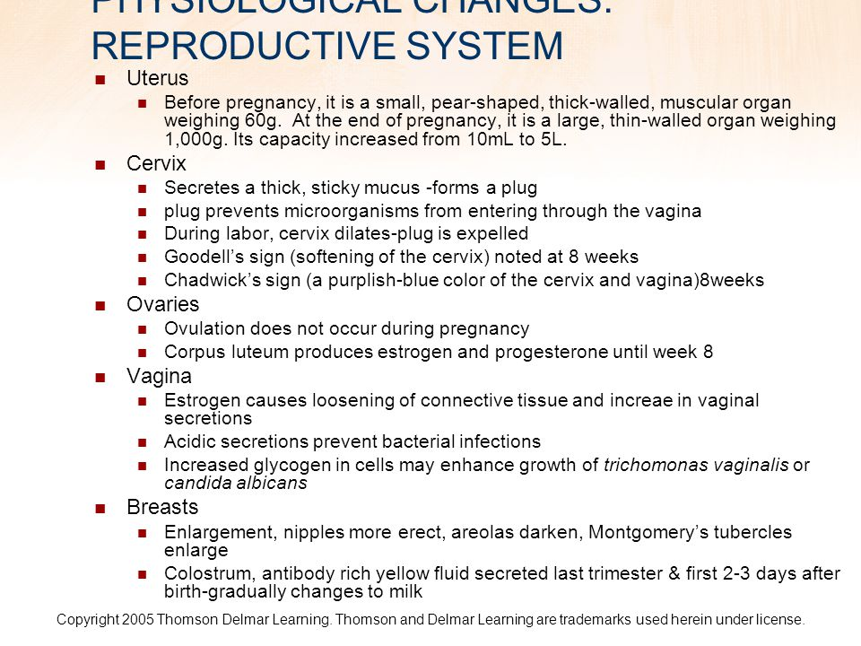 PHYSIOLOGICAL CHANGES: REPRODUCTIVE SYSTEM