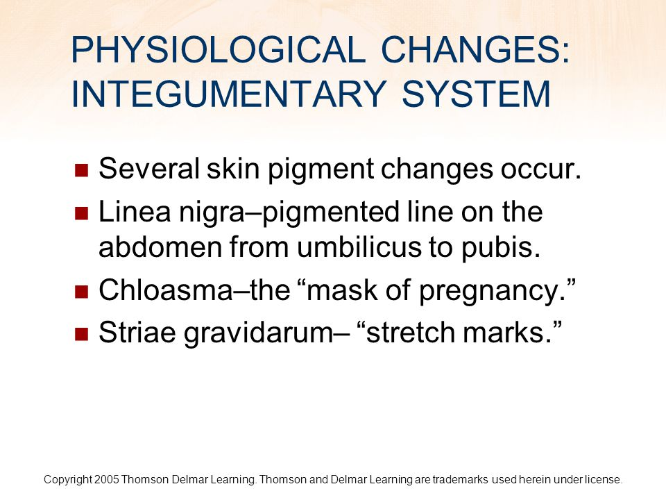 PHYSIOLOGICAL CHANGES: INTEGUMENTARY SYSTEM