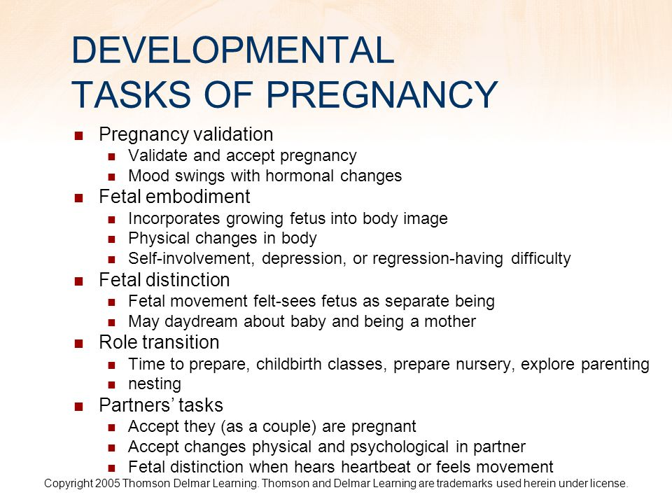 DEVELOPMENTAL TASKS OF PREGNANCY