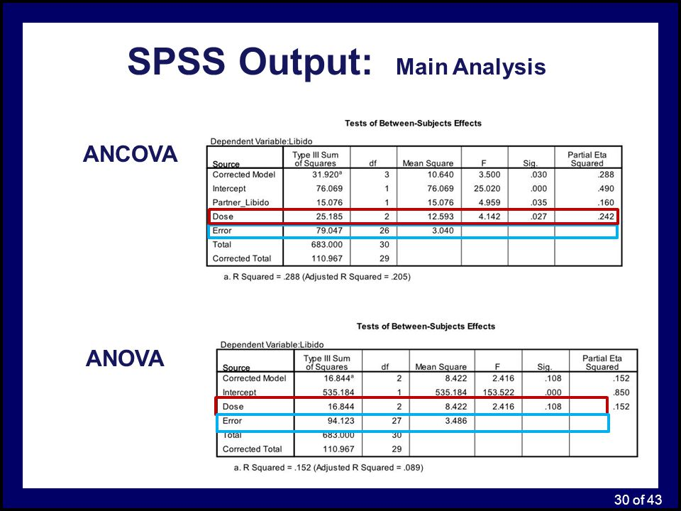 SPSS Output: Main Analysis