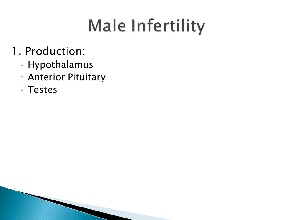 Male Infertility 1. Production: Hypothalamus Anterior Pituitary Testes