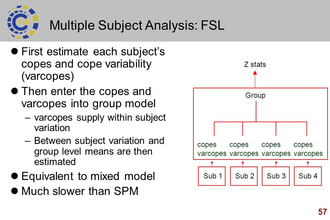 Multiple Subject Analysis: FSL