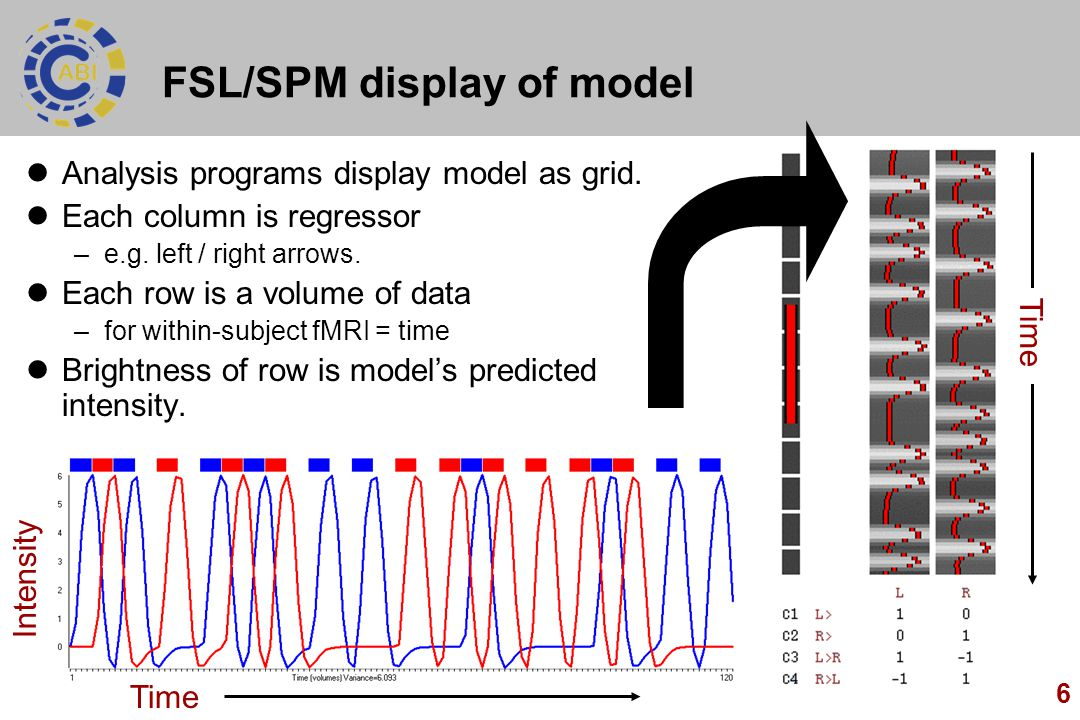 FSL/SPM display of model